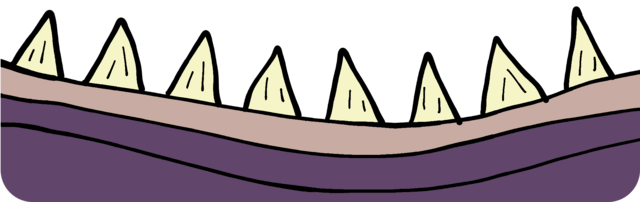 Denti di mostro inferiori.png