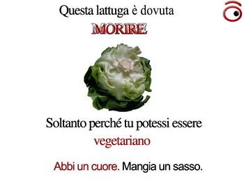 Campagna di sensibilizzazione contro il vegetarianismo.jpg