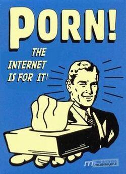 Porno - internet è per questo.jpg