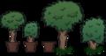 TreeDecors.png