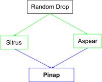Pinap Flow Chart.png