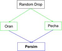 Persim Flow Chart.png