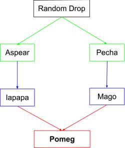 Pomeg Flow Chart.png