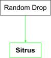 Sitrus Flow Chart.png