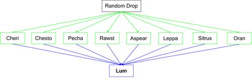 Lum Flow Chart1.png
