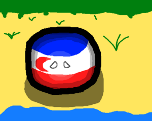 French Madagascarball staring into the beach, looking for independence..png