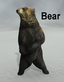 Mostdigitalcreations-bear.png