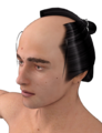 Fujiko-Utamaro-Hair for M4.png
