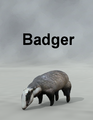 Mostdigitalcreations-badger.png