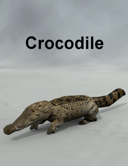 Mostdigitalcreations-Crocodile.png
