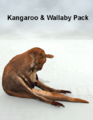 LynesCreations-Kangaroo- Wallaby-Pack.png