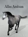 LadyfyreGraphics-AllasArabian.png
