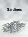Yajiro-Sardines.png