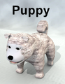 ScottAyers-Puppy.png