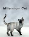 DAZ3D-Millennium Cat.png