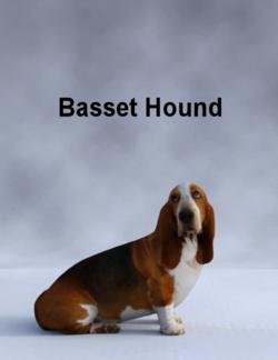 Mostdigitalcreations-BassetHound.png
