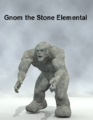 Stefan Leng-Gnom the Stone Elemental.png