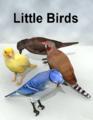 LynesCreations-LittleBirdsl.png