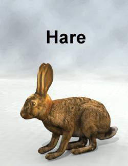 Mostdigitalcreations-Hare.png