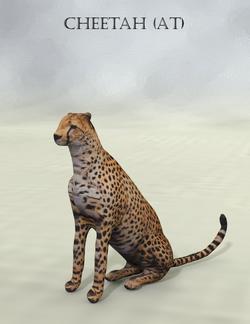 Mostdigitalcreations-Cheetah (AT).png