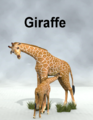 Lynes Creations-Giraffe.png