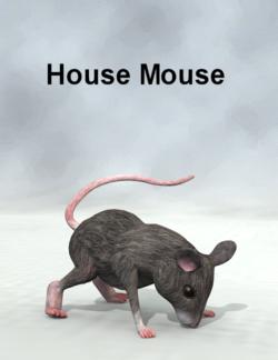 DAZ3d-HouseMouse.png