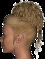 Palamas Hair V4.png