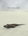 Mostdigitalcreations-Iguana (AT).png