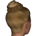 Braided Bun hair V4.png