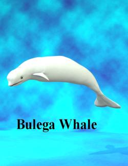 DebraRoss-Beluga.png