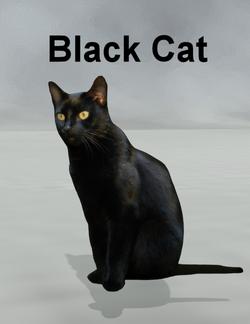 Mostdigitalcreations-BlackCat.png