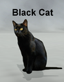 Mostdigitalcreations-BlackCat.png