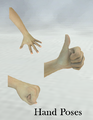 FP-HandPoses.png