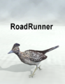 LynesCreations-RoadRunner.png