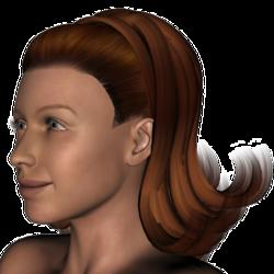 Nancy Hedford Hair V4.png