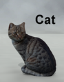 Mostdigitalcreations-Cat.png