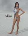 Winteryvonne200-AkinaCharcterandTextureforDAZ3DAiko4.png