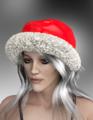 EvilInnocence-Morphing Santa Hat.png