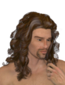 David3CurlyHair.png