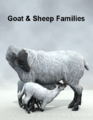 LyneCreations-GoatandSheepFamilies.png