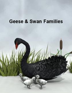 Lynes Creations-Geese Swan Families.png