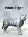 Mostdigitalcreations-WhiteTiger.png