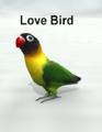 MostdigitalCreations-Lovebird.png