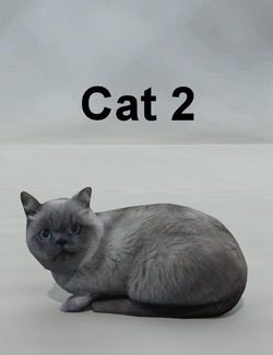 Mostdigitalcreations-Cat2.png