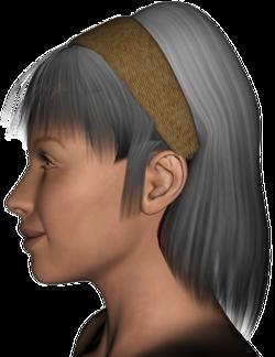 Traci Hair V4.png