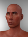 Mike77154-Wes Studi for Genesis 8 Male.png