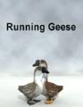 Wolmol-RunningGeese.png