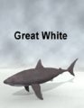 Mostdigitalcreations-GreatWhite.png
