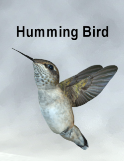 MostdigitalCreations-HummingBird.png