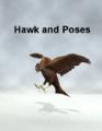 Papasmrfe-HawkandPoses.png